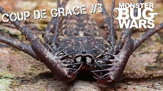 MONSTER BUG WARS   Coup De Grace Collection #3