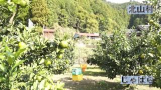 和歌山県PR動画 北山村 じゃばら:メディア向け動画素材
