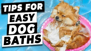 How To Give Your Dog A Bath (Tips to make giving your dog a bath EASIER)