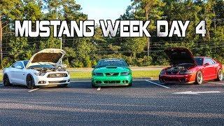 Mustang Week 2017 Day 4 Car Show thumbnail