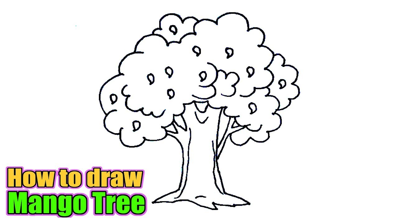 How To Draw A Mango Tree Sketch Of Mango Tree Easy Step By Step Youtube Once again, you must create a new shape below the outlines done in the previous step to create these plain colors. how to draw a mango tree sketch of mango tree easy step by step