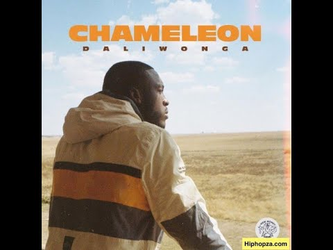 daliwonga- -chameleon-album-(mix-by-djafrotime)