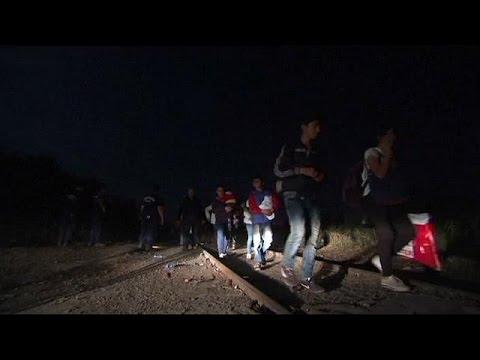 يورو نيوز: المجر تُعزز حدودها مع صربيا بسياج حدودي شائك للحد من تدفق المهاجرين غير الشرعيين