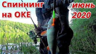 Рыбалка на ОКЕ на СПИННИНГ в ИЮНЕ 2020