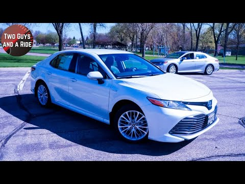 2019-toyota-camry-hybrid-xle-vs-2019-toyota-camry-le-gas