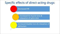 Direct Acting Cholinergic Drugs