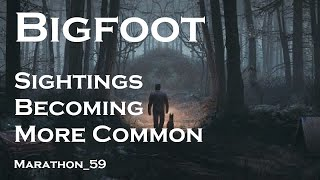 Bigfoot & Cryptid Sightings are Becoming More Common. Marathon_59