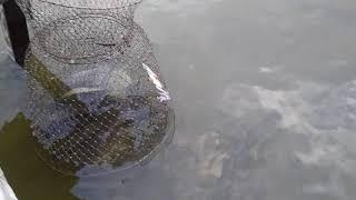 Рыбалка на челябинской области