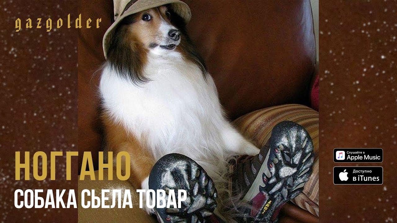 Ваф ваф одежда для собак