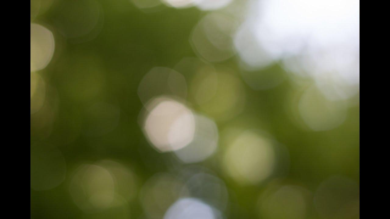 KREATIVE HINTERGRNDE FOTOGRAFIEREN  FOTOGRAFIE TIPPS UND