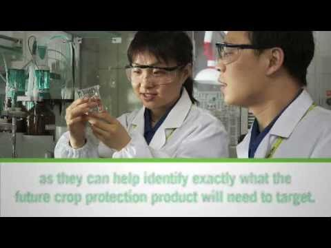 Research and Development in Plant Science