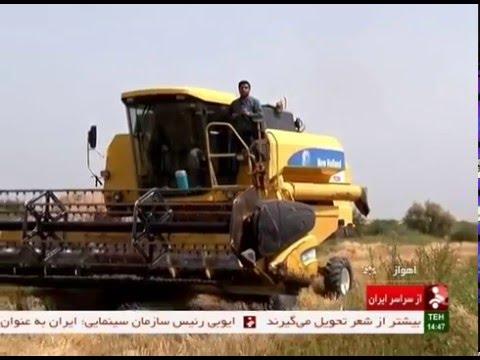 Iran khuzestan province, Mechanized Wheat harvest برداشت مكانيزه گندم استان خوزستان ايران
