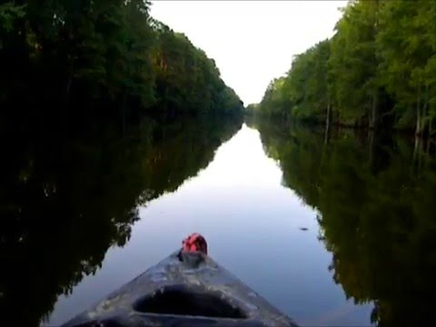 Floating Down a River