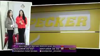 WoodpeckerShuvelan mebel magazasi(Xezer tv Harmoniya verliwi-1.4.2018)