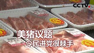 美猪议题令民进党很棘手 20201102 |《海峡两岸》CCTV中文国际 - YouTube