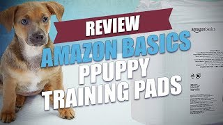 Amazon Basics Puppy Training Pads Review