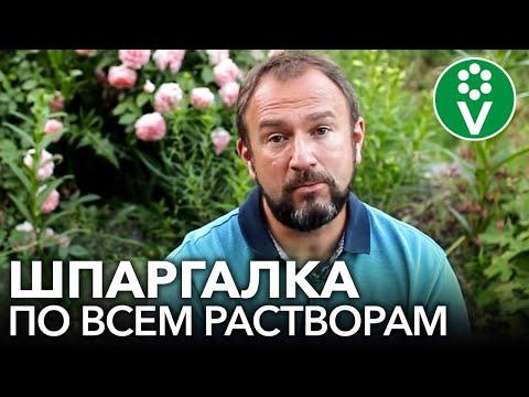 Вопрос: Листья каких растений содержат муравьиную кислоту?