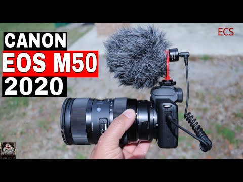 canon-eos-m50-photo-&-video-review-after-2-months-|-my-favorite-camera-for-vlogging-and-b-rolls