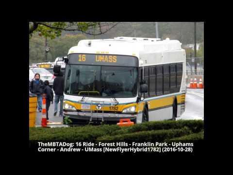 TheMBTADog: MBTA Bus 16 Ride - FOREST HILLS to UMASS via UPHAMS CORNER [New Flyer Hybrid 1782]