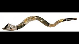 Raríssimo Shofar de Antílope 128 cm em Prata !!!