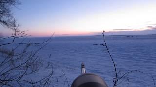 Охота на лис!На ловца и зверь бежит!:)Excellent fox hunting