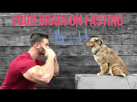 how-intermittent-fasting-affects-the-brain:-thomas-delauer
