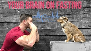 How Intermittent Fasting Affects the Brain: Thomas DeLauer