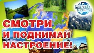 видео Участие в социально-экологическом проекте «Доброе дело»
