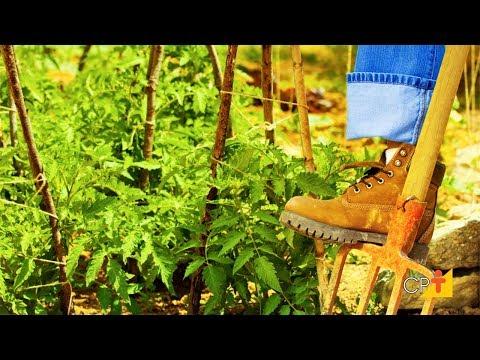 Clique e veja o vídeo Curso Segurança no Trabalho Rural