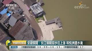 [中国财经报道]安徽铜陵:长江铜陵段水位上涨 和悦洲遭水淹  CCTV财经