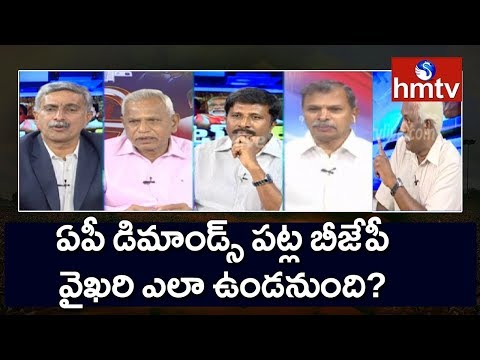 Will BJP Government Fulfill AP Special Status Demands? | What Next #4 | hmtv