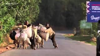 Routes à hauts risques   Les casse cous du Burundi 1