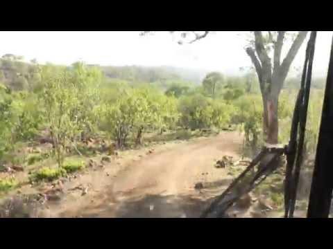 Gonarezhou terrain clip