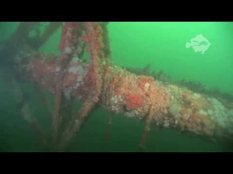 Diving on the wreck of the SS Hispania (Mull)