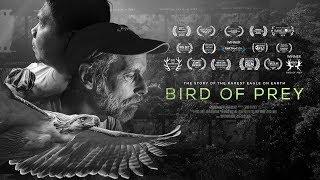 Bird Of Prey Movie Trailer