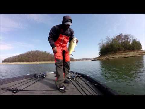 Bass Elite Series/Catches on Cherokee Lake 2017
