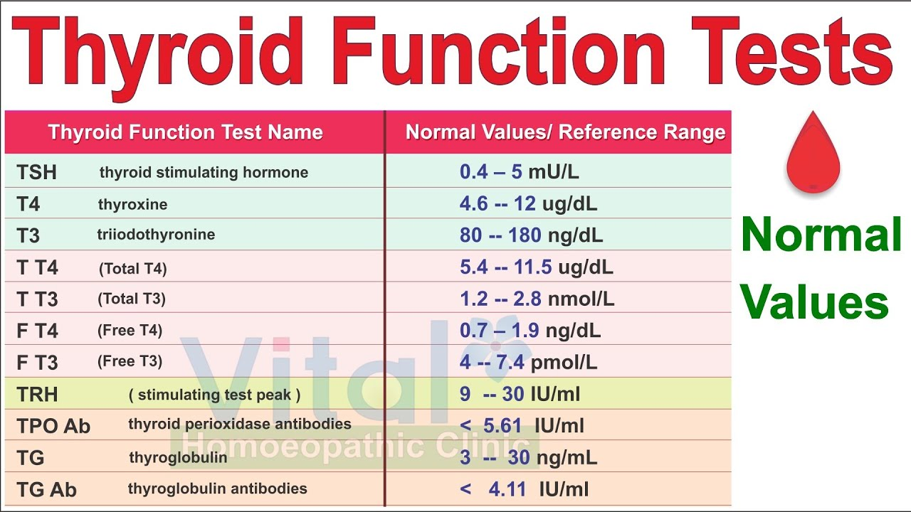 Thyroid Functions Test Chart Normal Values Of Each Test Dr