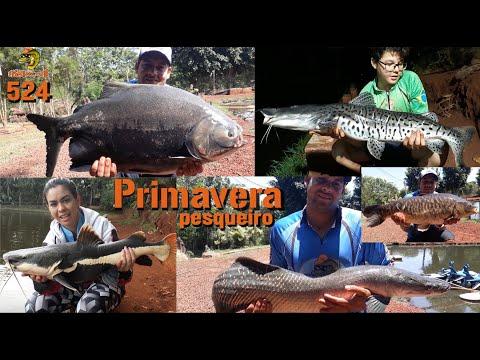 Primavera - Um festival de espécies na ponta da linha - Fishingtur na TV 524