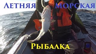 Летняя Морская Рыбалка / Summer Sea Fishing