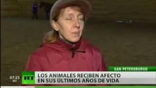 Un trato noble para los animales
