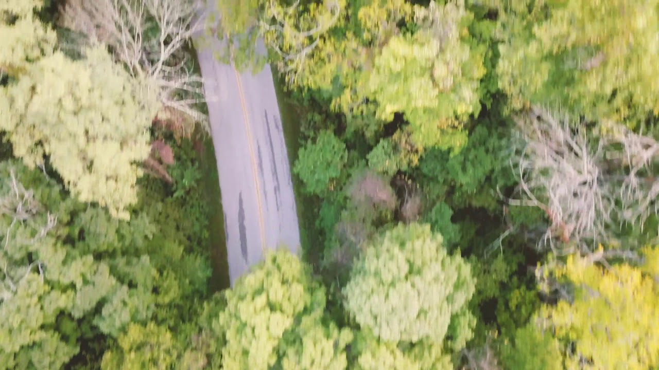 Flying Drone near Morgan Monroe State Forest Indiana