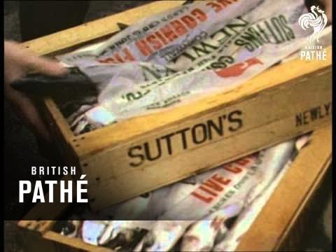 Billingsgate Fish Market (1960-1969)