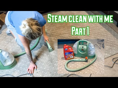 CLEANING MOTIVATION   BISSELL LITTLE GREEN PROHEAT REVIEW