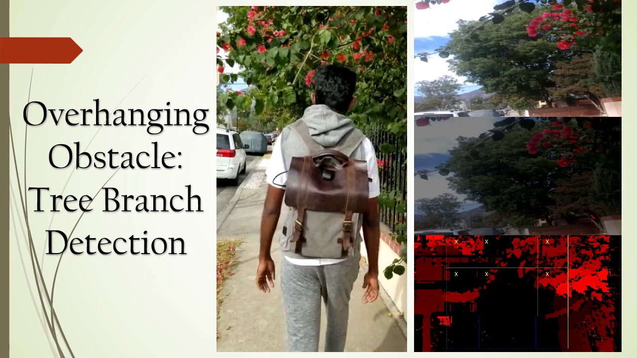 Visual Assistance System for the Visually Impaired