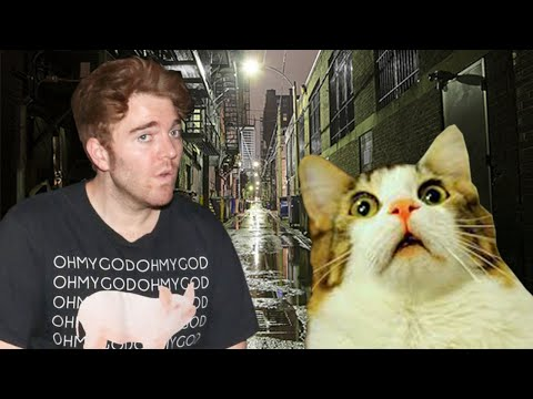 Shane Dawson Forced To Apologize For Disturbing Joke That Could End His Career