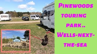 Pinewoods Touring Park Review part 1  , Wells-Next-The-Sea , Norfolk 2019