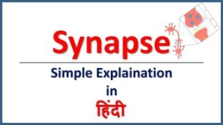 Synapse & Its Types (Simple explaination in Hindi) | Bhushan Science