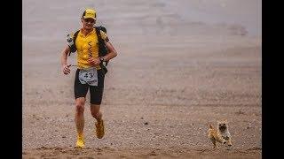 This Ultra Runner Wants To Adopt The Dog That Ran Beside Him In A Grueling Gobi Desert Rac