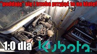 1:0 dla Kuboty #projektkontener #11#domza150tysiecy.pl #zróbtosam