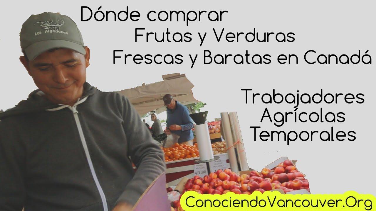 D nde comprar frutas y verduras frescas y baratas en - Donde comprar cortinas baratas ...
